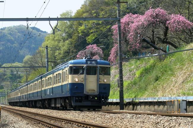 20100426小名路踏切しだれ桜.JPG